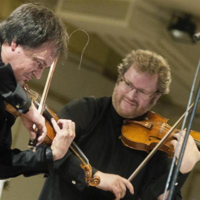 2014-06-08 Lietuvos kamerinis orkestras photo-D.Matvejevas