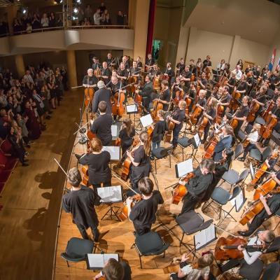 100 violončelių