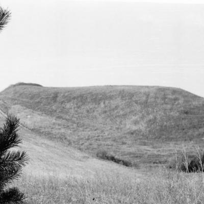 Maniuliškių piliakalnis