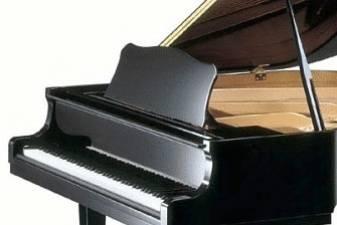 Vis daugiau muzikantų reiškia nepasitenkinimą blogu publikos elgesiu, teigia Charlotte Smith.