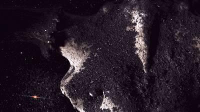 Miko Žukausko objektyve – Žibuoklės Martinaitytės muzika