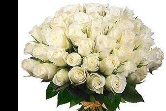 Sveikiname vargonininkę Aureliją Kiškelytę
